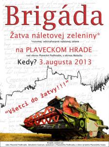 brigadaV_m